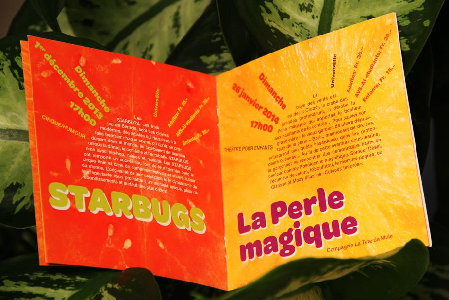 programme-culturel_2013-grande2